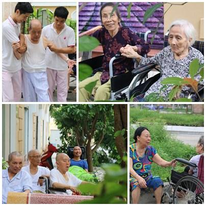 niềm vui tuổi già